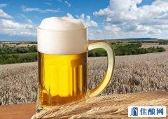 喜力啤酒2015一季度净