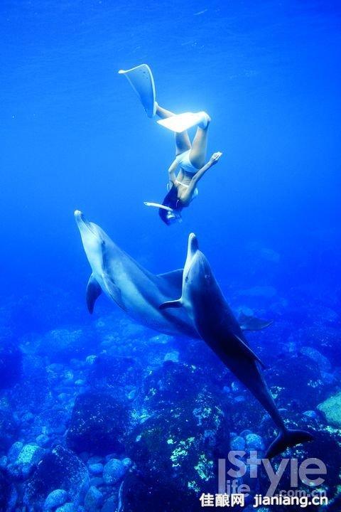 在水中拍摄可不是会潜水那么简单,相机和闪光灯都有各自的防水罩