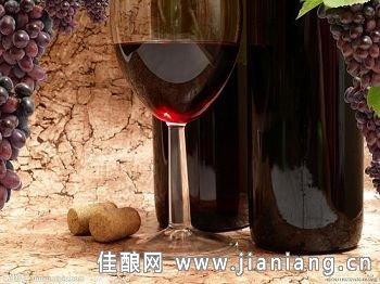 智利莱达酒庄 阿空加瓜产区莱达谷著名酒庄