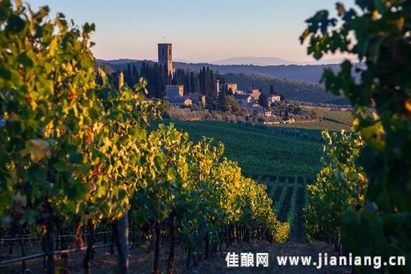 深沉的红色魔咒――安东尼世家帕西诺修道院干红葡萄酒