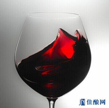 品鉴葡萄酒之闻香