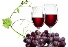 快来开启葡萄酒美食盛宴吧