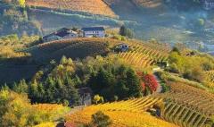 皮埃蒙特:美景、美食、美酒之乡