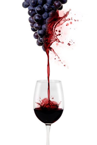 研究表明:红酒分子或将有助延缓阿尔茨海默病