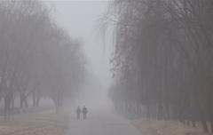雾霾经济学被催生 白