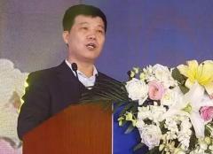 2016销售额33.5亿 西凤2017确定目标36亿