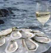 """""""海中牛奶""""牡蛎与干白的完美搭配"""