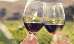 为什么说葡萄酒适饮温