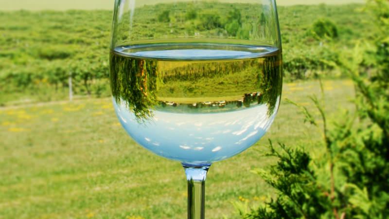 为什么你的葡萄酒有新鲜青草味?