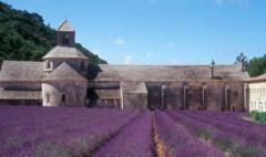 普罗旺斯:邂逅浪漫桃红葡萄酒之旅