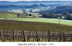 葡萄酒旅游新去处:南