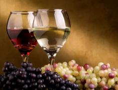 勃艮第葡萄酒2018年度