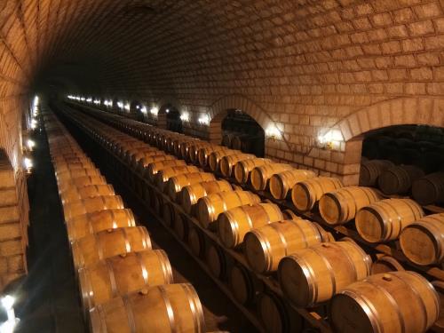 寻觅葡萄酒中的红色水果香气